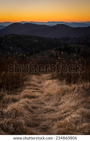 A hiking path leads in to the Middle Prong Wilderness area of the Blue Ridge Mountains of North Carolina. - stock photo