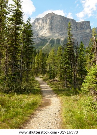 A Hiking Trail in the Canadian Rockies - stock photo