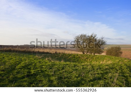 a hillside burial mound with hedgerows and dry grasses on a valley slope in a yorkshire wolds landscape under a blue cloudy sky in winter