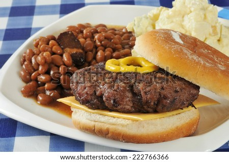 A home grilled hamburger with baked beans and potato salad on a picnic table - stock photo