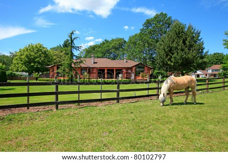 A horse ranch in Washington State, USA with horse standing along the wood fence and the house in the background. - stock photo