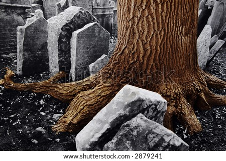 A huge trunk of tree among ancient tombstones in old jewish cemetery in Old Town of Prague, Czech republic, Europe