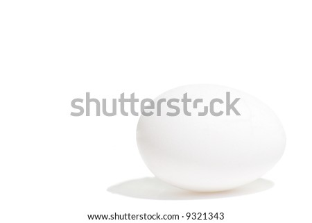a isolated white egg