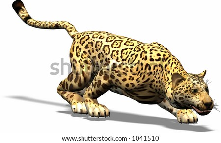 A Jaguar on the hunt