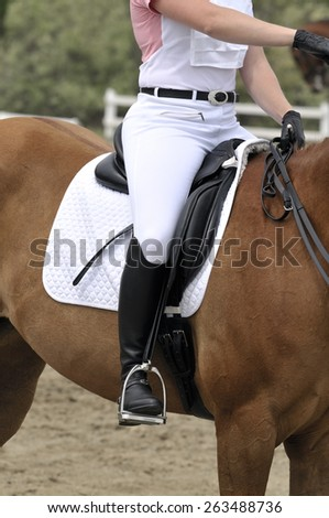 A jockey on the horse for run - stock photo
