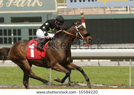 A jockey sprints to the finish line in a thoroughbred horse race. - stock photo