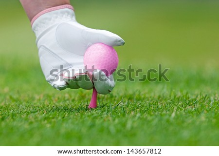 A ladies hand in white leather glove holding a pink golf ball placing a tee into the ground. - stock photo