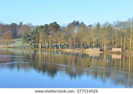 A lake at an English country estate in West Sussex England in Winter   - stock photo