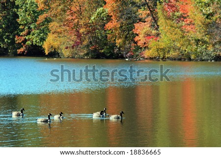 A lake on a cool Autumn New England day. - stock photo