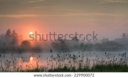 A lake with the rising sun above and wild grass in the foreground. - stock photo