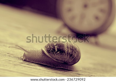 a land snail and an old desktop clock on a wooden table, in sepia tone - stock photo