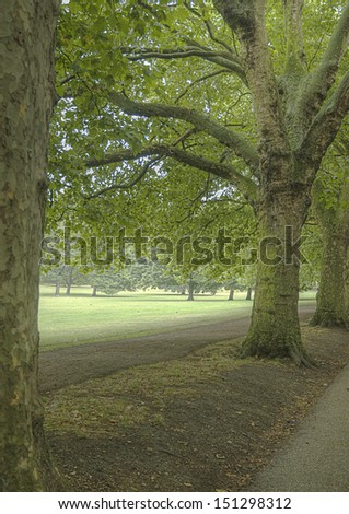 A lane in Hyde Park, London, UK - stock photo