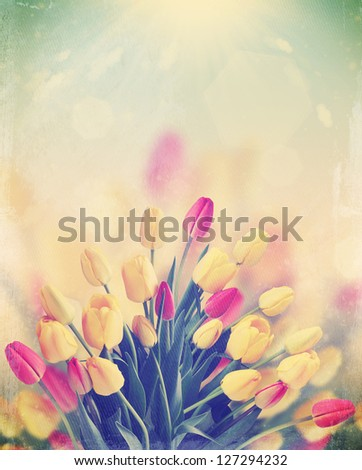 a large bouquet of tulips on the background of the sunny sky,vintage - stock photo