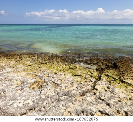 A large photograph of a rocky tropical shoreline with tropical ocean water and bright blue sky.