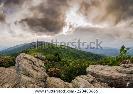 A late afternoon view of Round Bald during the rhododendron bloom - stock photo