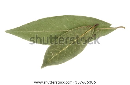 a laurel sheet is isolated on a white background