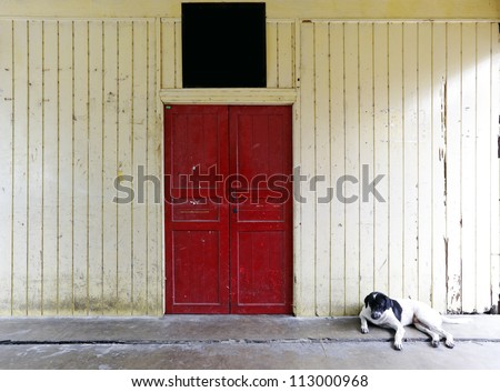 A lazy guard dog waiting at a wooden door on a grungy timber wall with a blank signboard.