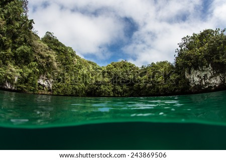 A limestone island surrounds a marine lake in the Republic of Palau. This country is home to over fifty saltwater lakes as well as beautiful coral reefs. - stock photo