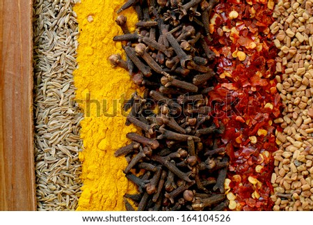 A line-up of cinnamon, cumin seeds, turmeric, cloves, crushed chillies and fenugreek seeds - typical ingredients of a curry powder - stock photo