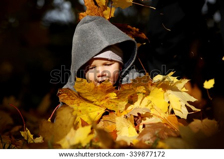 A little child playing in the autumn leaves - stock photo
