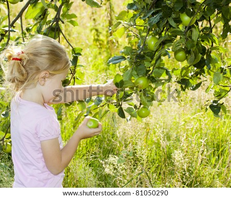 A little girl picking an apple from a tree - stock photo