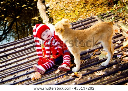 a little girl to costume dwarf white and red striped colors walks with the dog warm autumn in the woods near water. The concept of the friendship of a man and a child with animals - stock photo