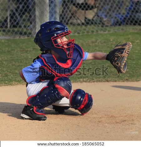 A Little League Catcher Concentrating Behind the Plate - stock photo