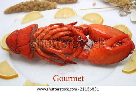 a lobster - stock photo