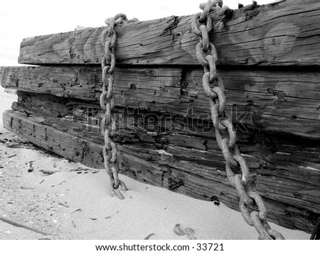 A Log at the Beach - stock photo
