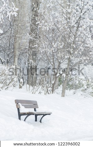A lonely bench in a forest during winter - stock photo
