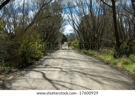 A lonely country lane, near Moss Vale, New South Wales, Australia