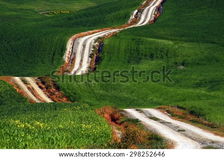 A long and winding rural path crosses the green hills, Tuscany, Italy - stock photo