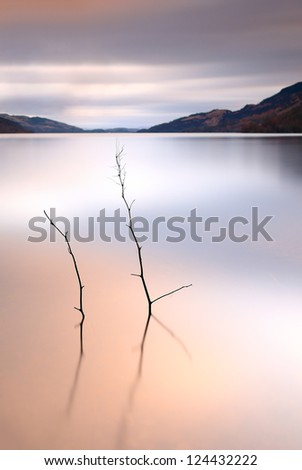 A long exposure at Sunset from the shores of Loch Lomond with a small tree partially submerged in the water - stock photo