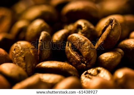 a lot of brown coffee beans - stock photo