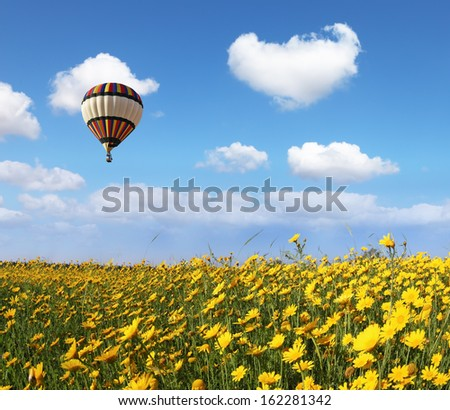 A lot of lovely blooming flowers and shining clouds. Over the blossoming field of flying a balloon