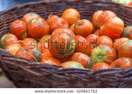 A lot of orange autumnal pumpkins in full basket - stock photo