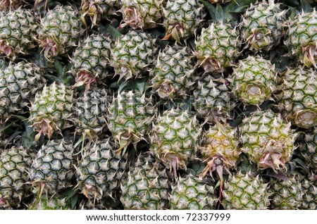 a lot of pineapples for sale in the market