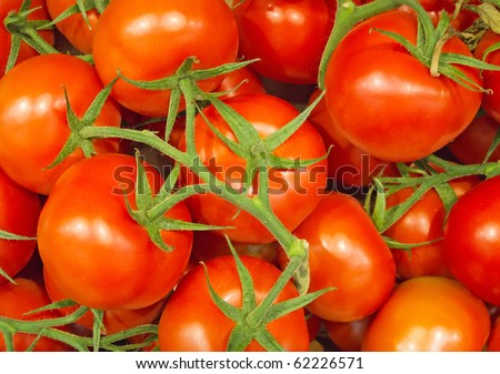 a lot of red ripe tomatoes background - stock photo