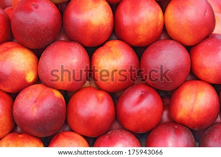 A lot of ripe and juicy nectarines at the market - stock photo