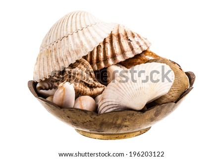 a lot of seashells in a bowl isolated over a white background - stock photo