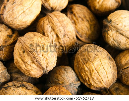 A lot of walnuts close-up - stock photo