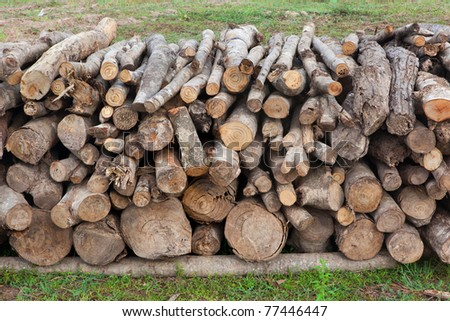 A lot of wooden stumps laying on a green field - stock photo