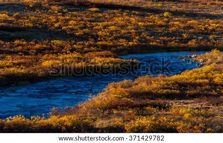 A low evening sun lights upper Rock Creek near the Tangle Lakes, Alaska - stock photo