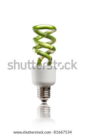 A lucky bamboo light bulb representing green energy - stock photo