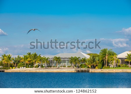 A luxury house on a canal in Southwest Florida, USA, surrounded by palm tress and lush lawns. - stock photo