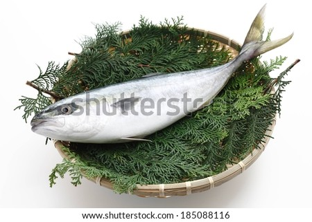 A mackerel fish sitting atop greens in a woven basket. - stock photo