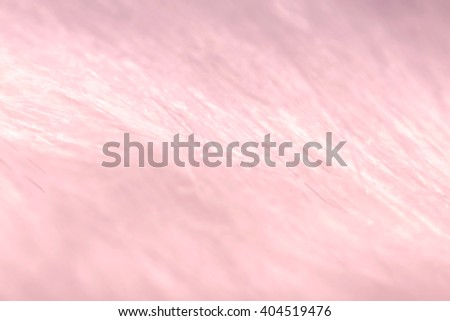 A Macro close up blurred abstract background of synthetic, silvery, white and pink fur textured fabric. - stock photo