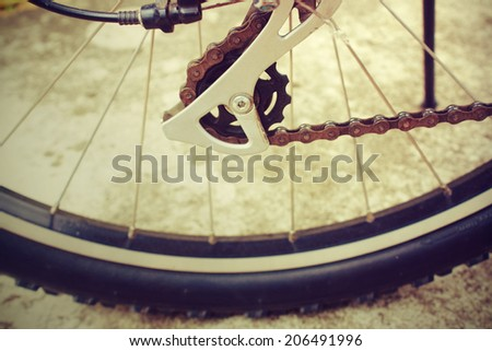 A macro image of a back wheel of a bicycle