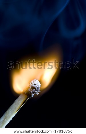 A macro shot of a match igniting