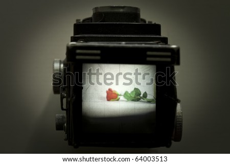 A macro shot of viewfinder of an old TLC camera, focusing at a rose on a white background. No post editing. no filters. - stock photo